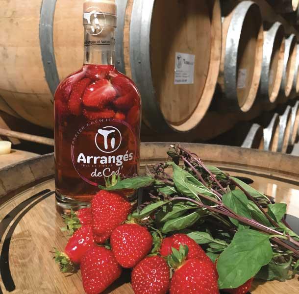 Ti Ced fraise basilic