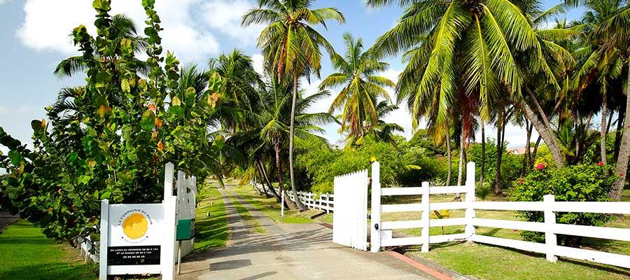 La Compagnie du Rhum - Martinique