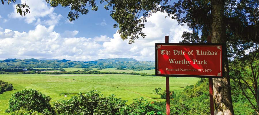 Worthy Park - Jamaïque