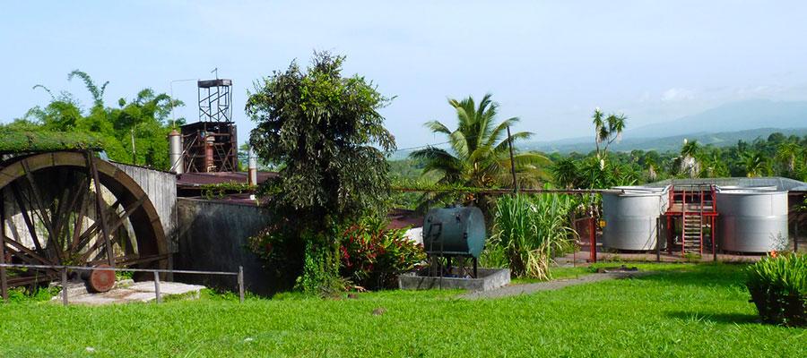 Visite Domaine de Séverin - Guadeloupe