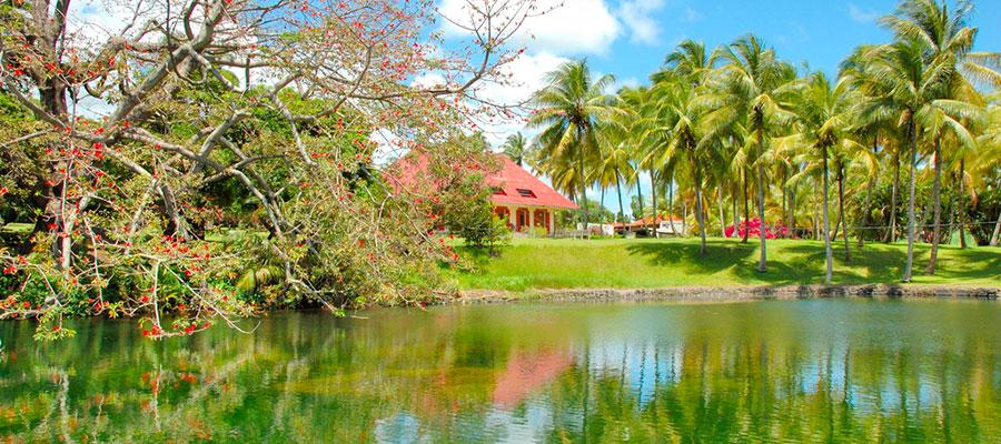 Visite Distillerie Longueteau - Guadeloupe