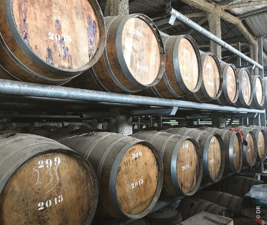 Distillerie Rhum Saint-Maurice Guyane