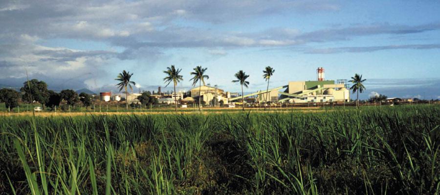 Rhum & Développement durable - Rivière du Mât