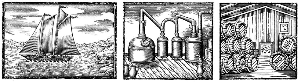 mountgay-illustration