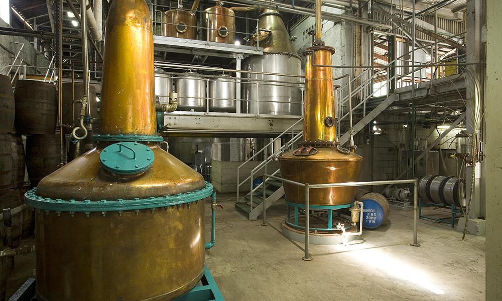 distillerie-saintelucie