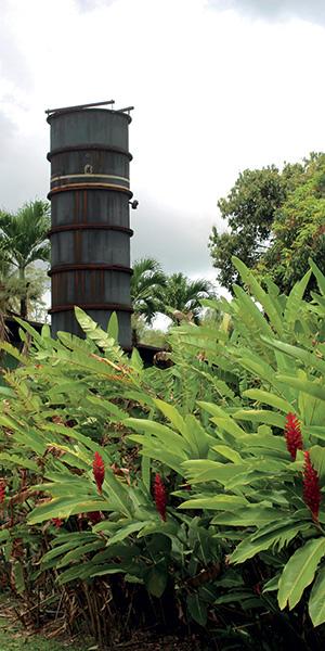 HSE vestige colonne