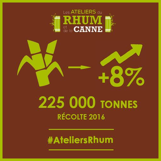 Les ateliers du Rhum et de la Canne - récolte 2016