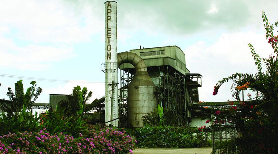 Distillerie Appleton Estate