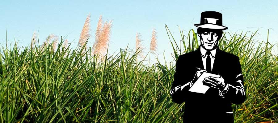 Rhum News : Agricoles, dégustation exceptionnelle, prohibition … Une semaine sur Rumporter !