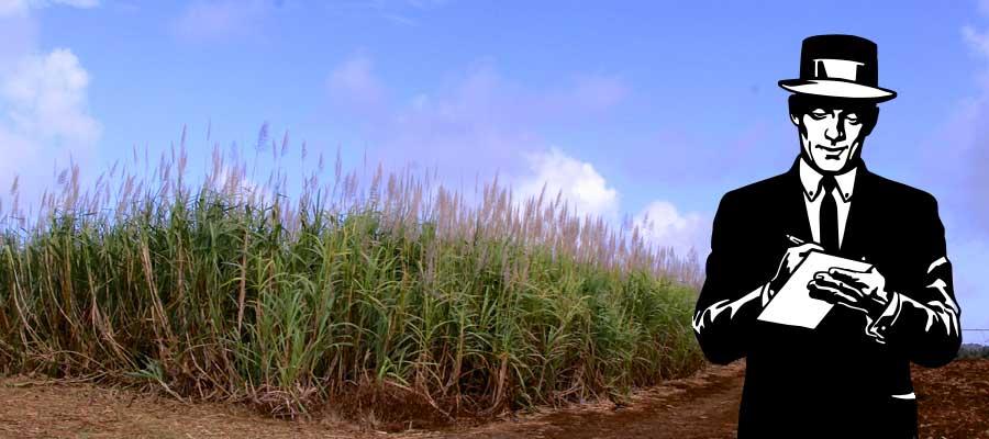 Rhum News : Rhums JM, dégustation de l'Esprit, Haïti, Fête du Mojito… Une semaine sur Rumporter !
