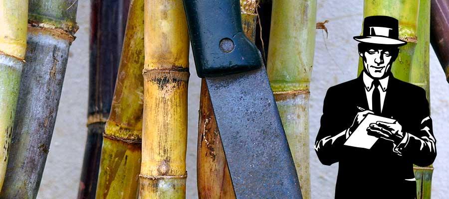 Rhum News : AOC Martiniquais, IGP Guadeloupéen, mixologie… Une semaine sur Rumporter !