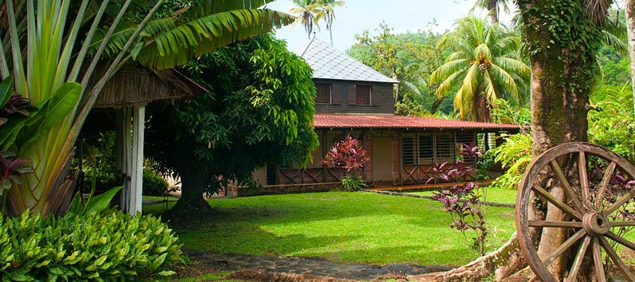 Visiter Maison La Mauny - Rhum Martinique