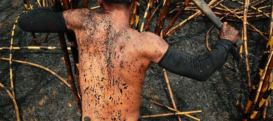 Coupeur de canne à sucre au Nicaragua