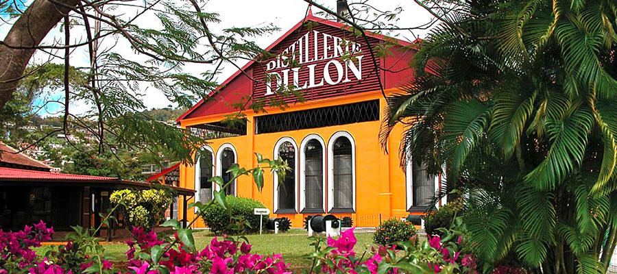 Dégustation Dillon: entre tradition et modernité