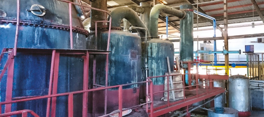 Focus on the distillery: Long Pond, secrets of the phoenix of Jamaica