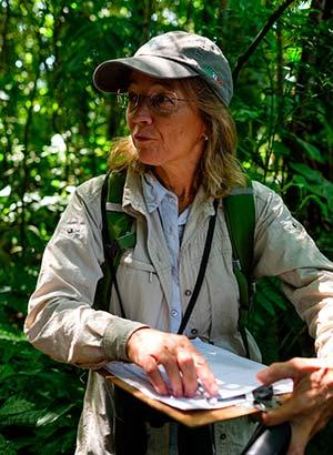 Dr Silvia Ziller Novo Fogo